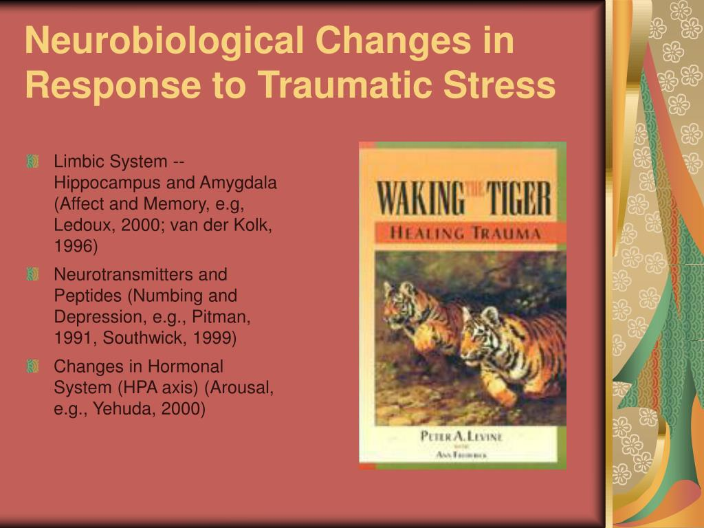 Neurobiological Changes in Response to Traumatic Stress