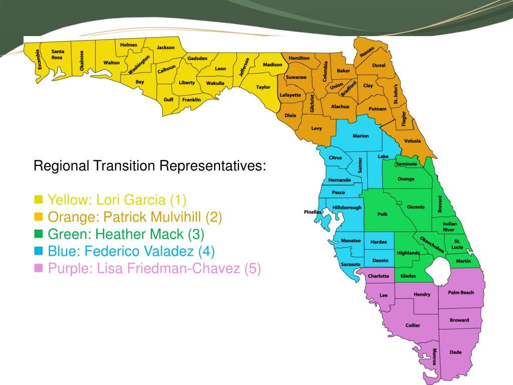 Regional Transition Representatives: