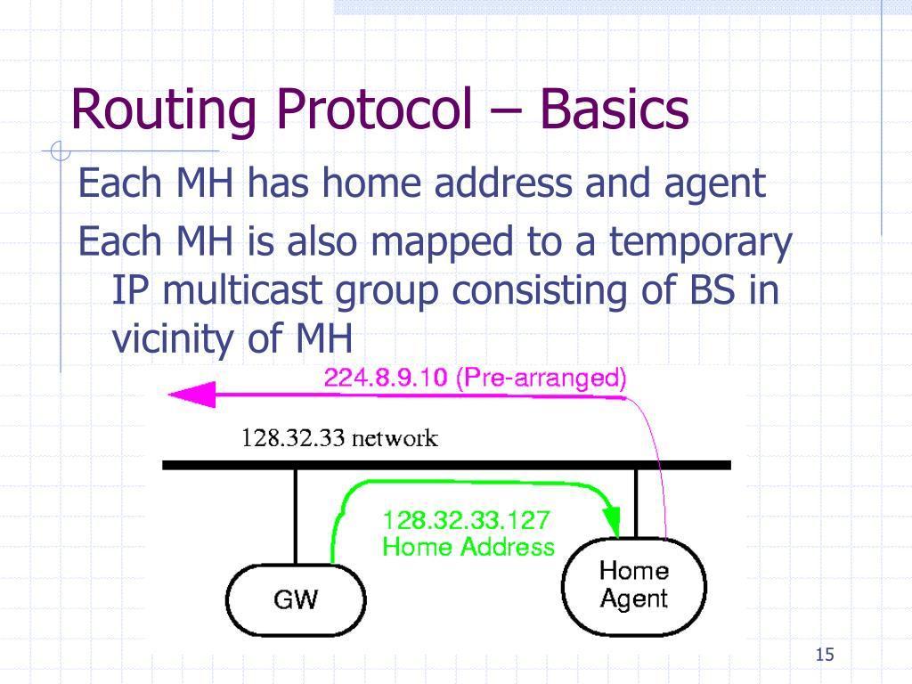 Routing Protocol – Basics