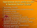 operational units within the ict services sector cluster