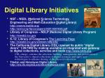 digital library initiatives