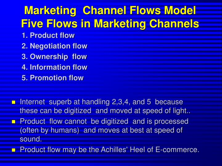 Marketing  Channel Flows Model