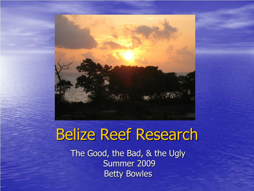 Belize Reef Research