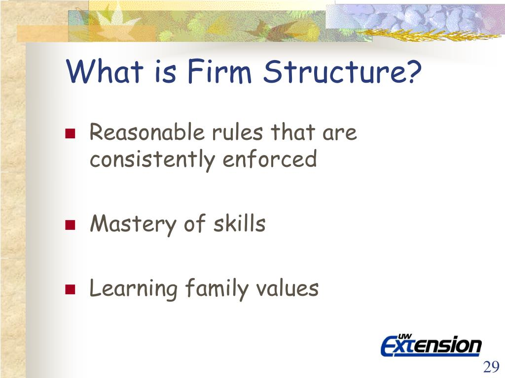What is Firm Structure?