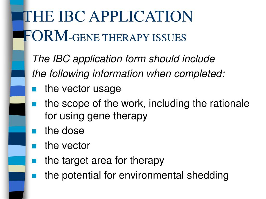 THE IBC APPLICATION FORM