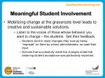 meaningful student involvement10