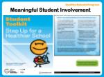 meaningful student involvement11
