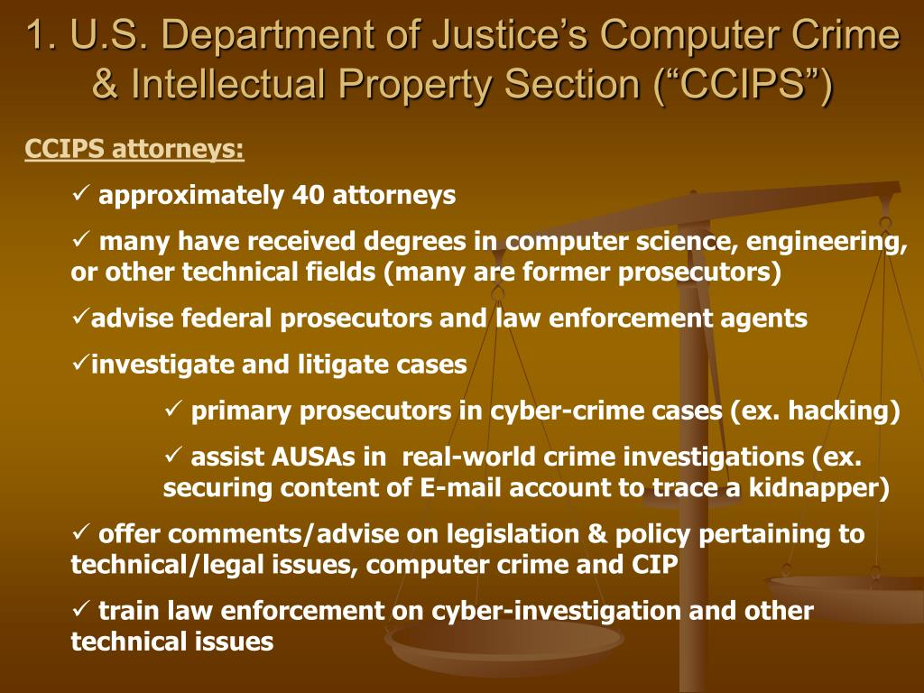 """1. U.S. Department of Justice's Computer Crime & Intellectual Property Section (""""CCIPS"""")"""