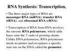 rna synthesis transcription