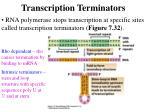 transcription terminators
