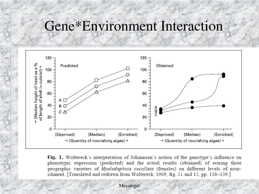 Gene*Environment Interaction