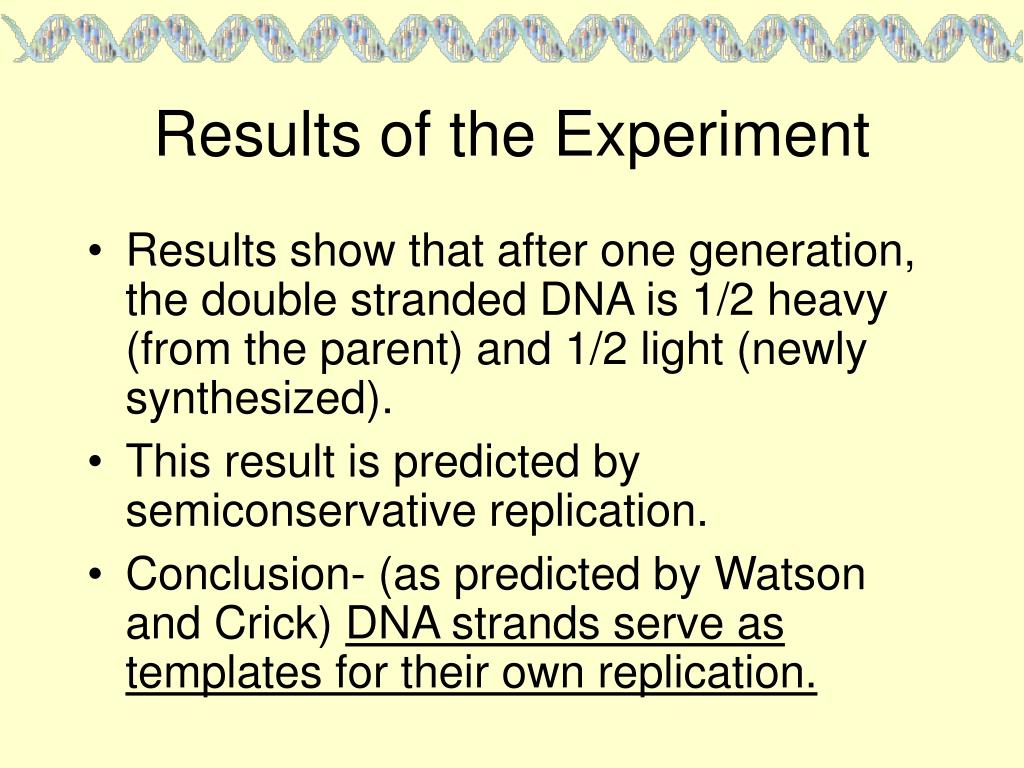 Results of the Experiment