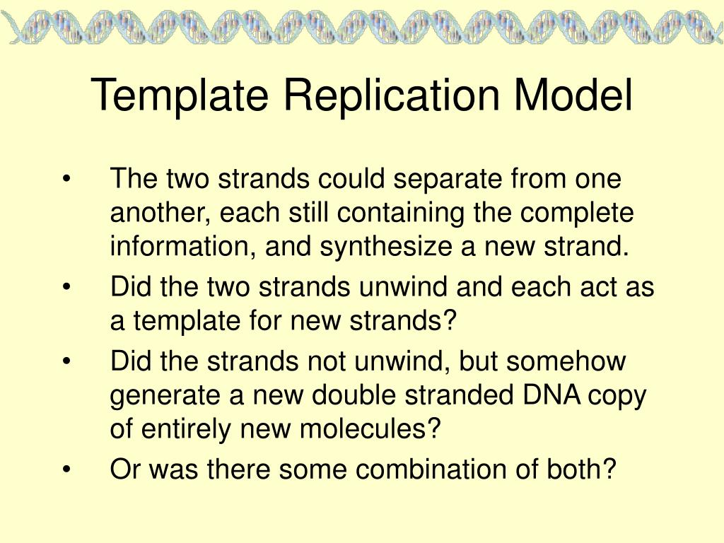 Template Replication Model