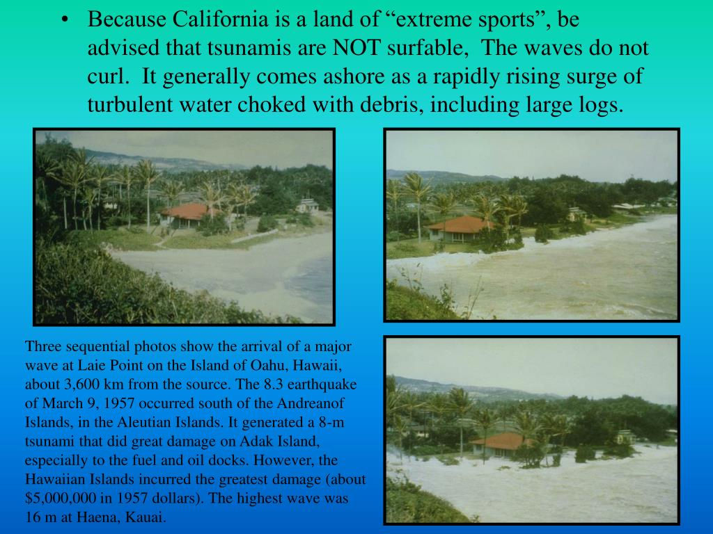 "Because California is a land of ""extreme sports"", be advised that tsunamis are NOT surfable,  The waves do not curl.  It generally comes ashore as a rapidly rising surge of turbulent water choked with debris, including large logs."