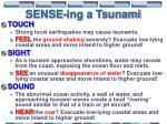 sense ing a tsunami