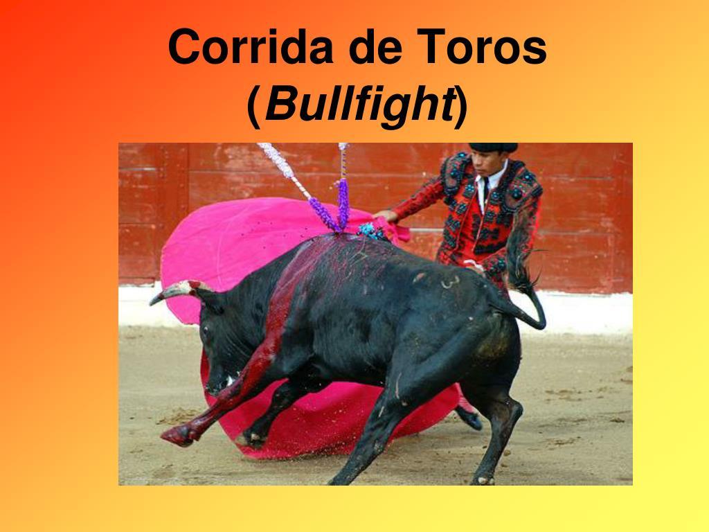 corrida de toros bullfight l.
