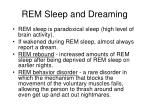 rem sleep and dreaming