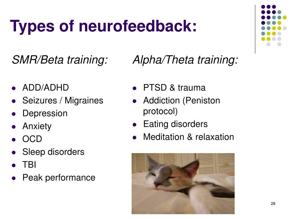 PPT - EEG Biofeedback: PowerPoint Presentation - ID:26385