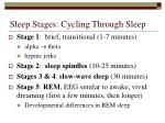 sleep stages cycling through sleep