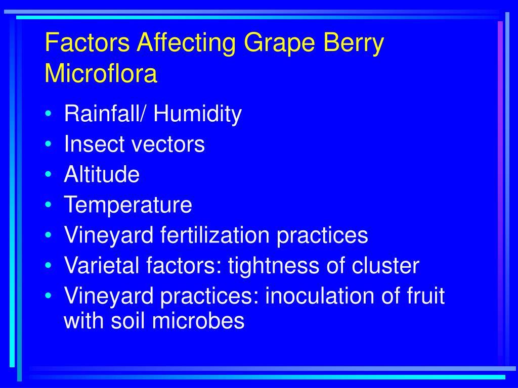 Factors Affecting Grape Berry Microflora