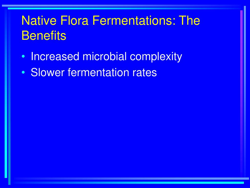 Native Flora Fermentations: The Benefits