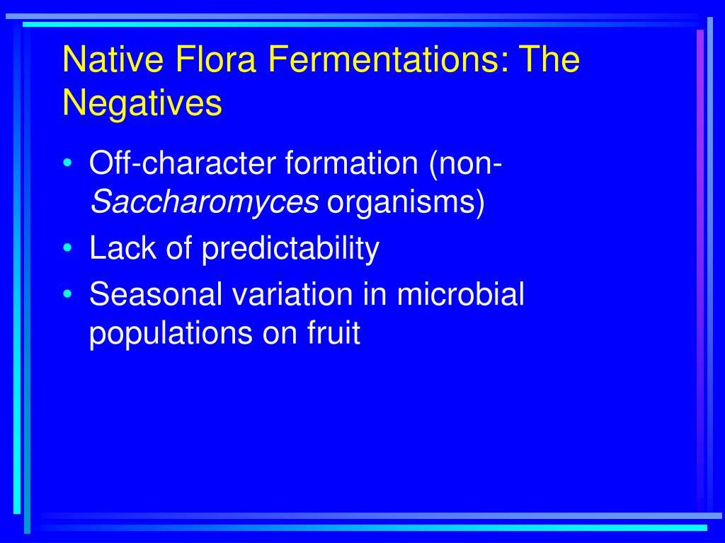 Native Flora Fermentations: The Negatives