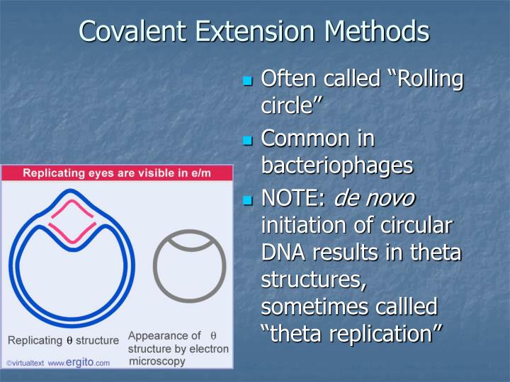 Covalent Extension Methods