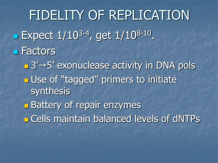FIDELITY OF REPLICATION