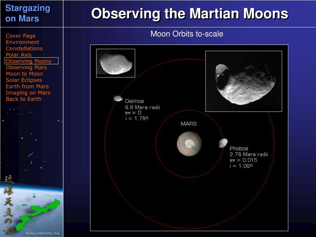 Observing the Martian Moons