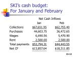 ski s cash budget for january and february