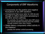 components of erp waveforms