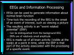eegs and information processing