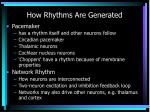 how rhythms are generated