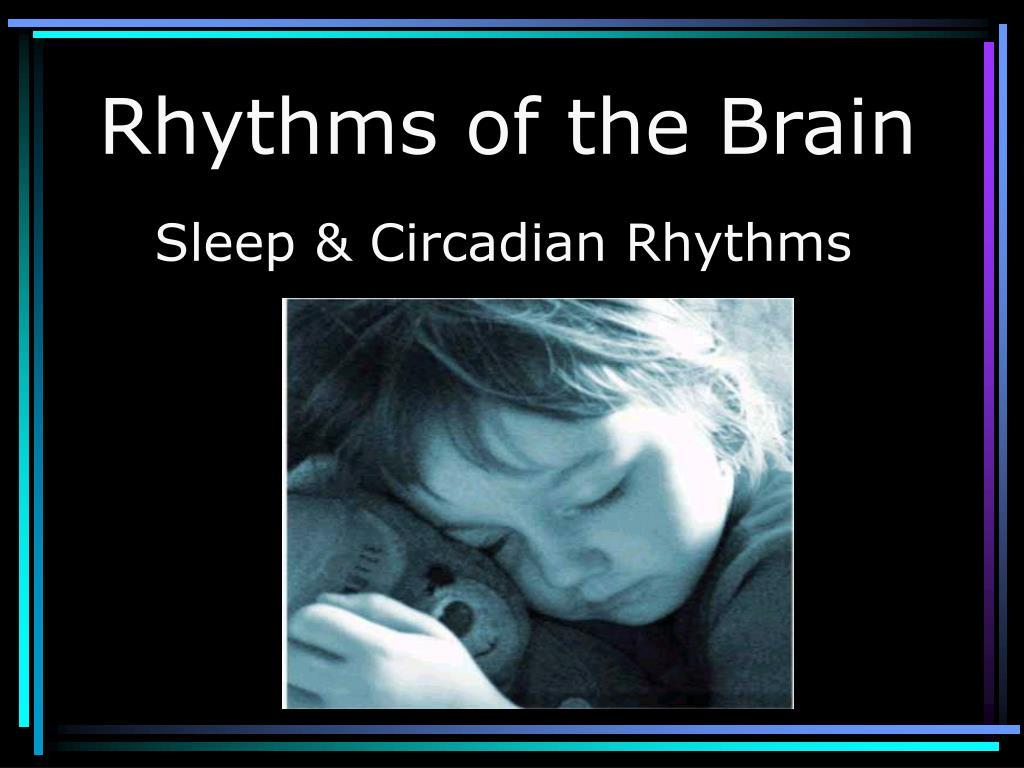 rhythms of the brain l.