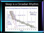 sleep is a circadian rhythm