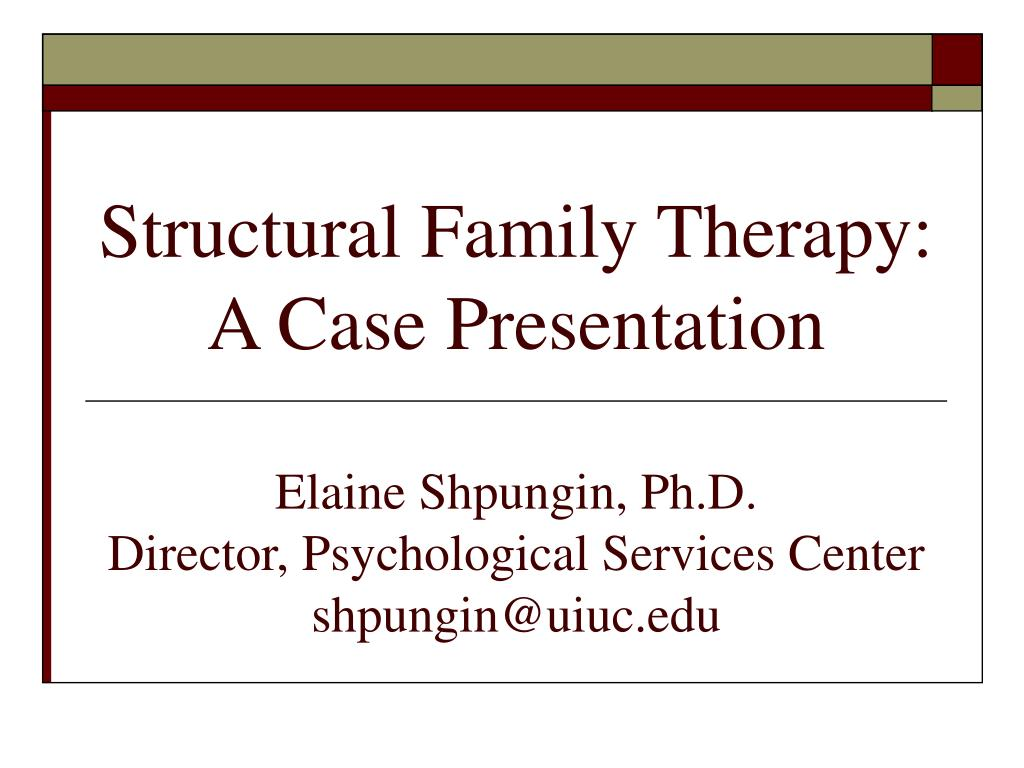 family systems therapy Contributors to family systems theory: family systems therapy is represented by a variety of theories and approaches, all of which focus on the relational aspect of human problems.