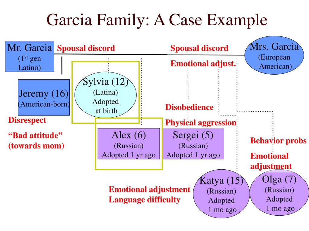 Garcia Family: A Case Example