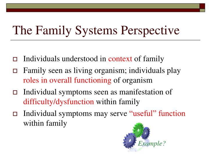 The family systems perspective