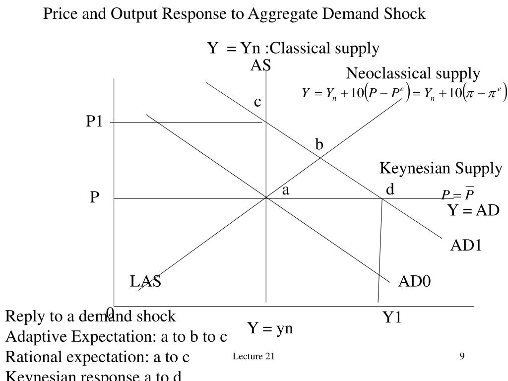 Price and Output Response to Aggregate Demand Shock