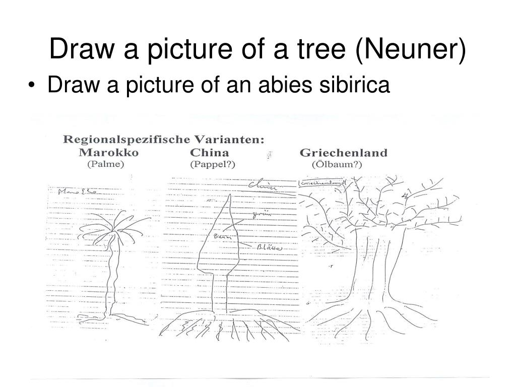 Draw a picture of a tree (Neuner)