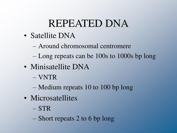 REPEATED DNA