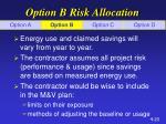 option b risk allocation