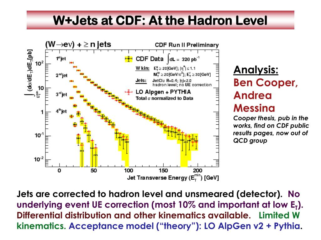 W+Jets at CDF: At the Hadron Level