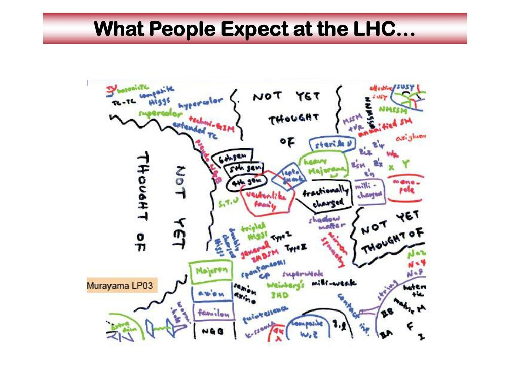 What People Expect at the LHC…
