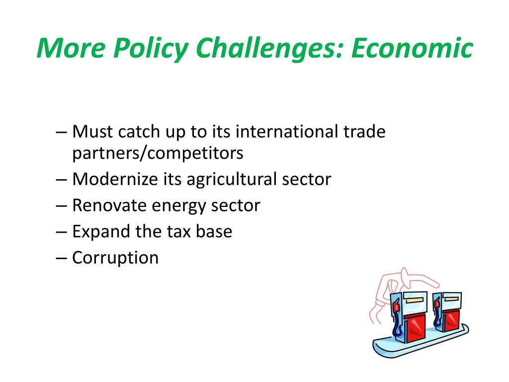 More Policy Challenges: Economic