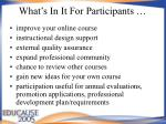 what s in it for participants