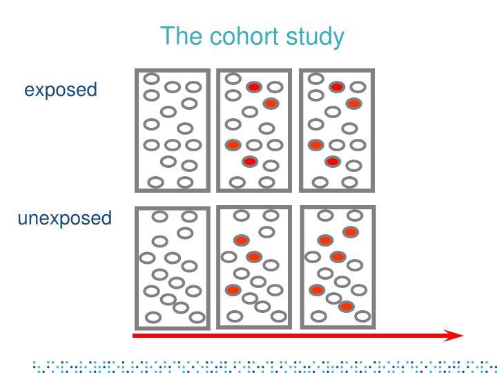 The cohort study