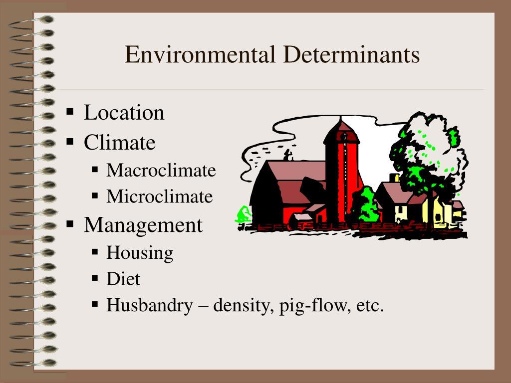 Environmental Determinants
