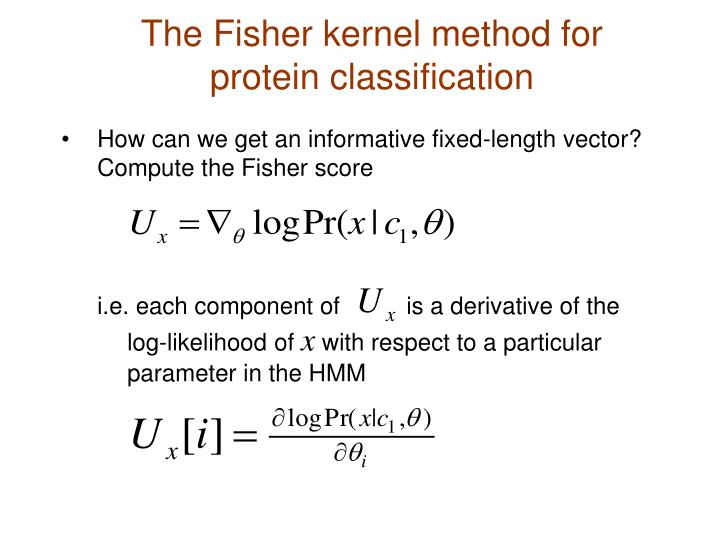 The Fisher kernel method for