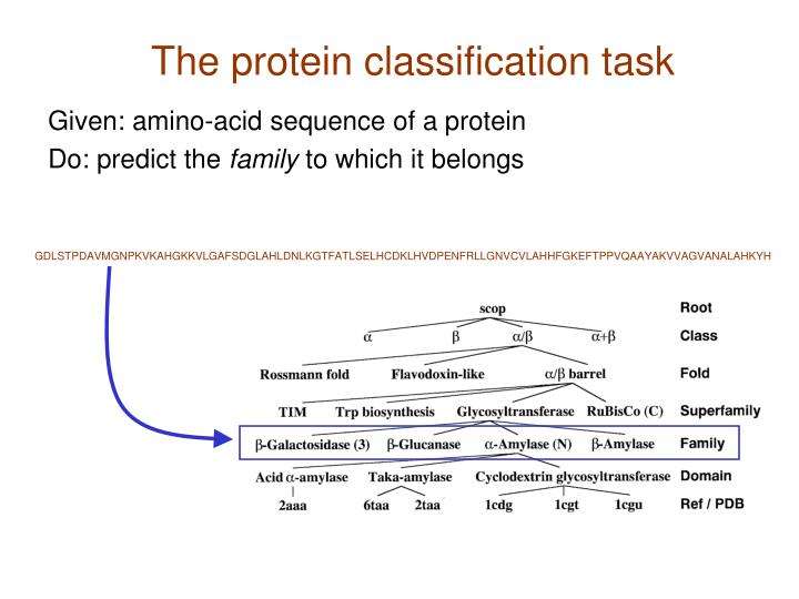 The protein classification task